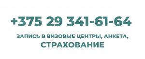 +375293416164